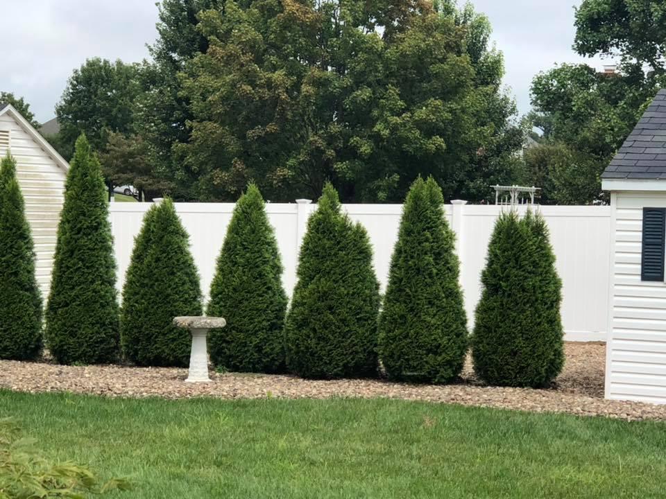 Landmark Fence vsb2.jpg