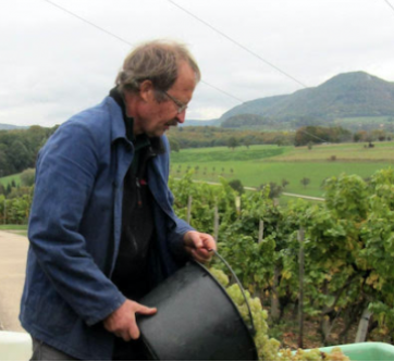 The Mountain Wines of Helmut Dolde - Riesling, Sylvaner, and more from a rare spirit working among the highest vineyards in Germany.  April 2019