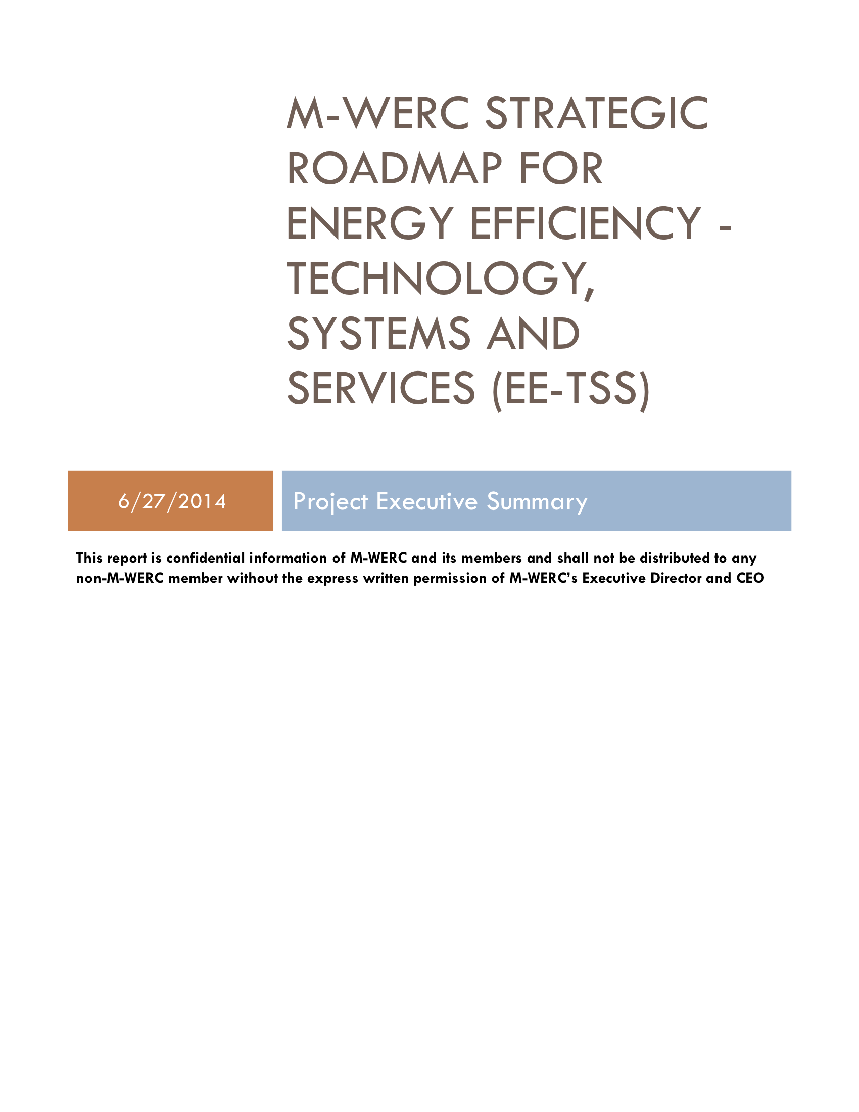 EE Strategic Roadmap Executive Summary