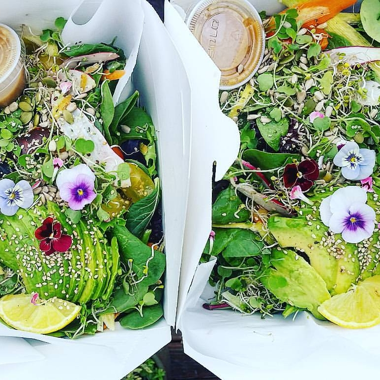 Food Packages and Delivery - Treat yo-self with a whole food, plant based, gut healthy, skin clearing, collagen plumping, nutrient dense eats! This is not a cleanse, this is real and healthy food! Feel the power of nutrient dense, trace mineral rich meals with life-force energy from real and whole ingredients! Feel free to have your package adjusted for your special dietary requirements. Participate in seasonal package offerings like the Spring-Clean- Eating Package offered in April of each year, and the Winter Warrior Package to help support your immunity before the cold-season, offered in November of each year.Simply reach out to schedule your package deliver,  or host your own group of up to 5 friends and receive your own package 50% off!