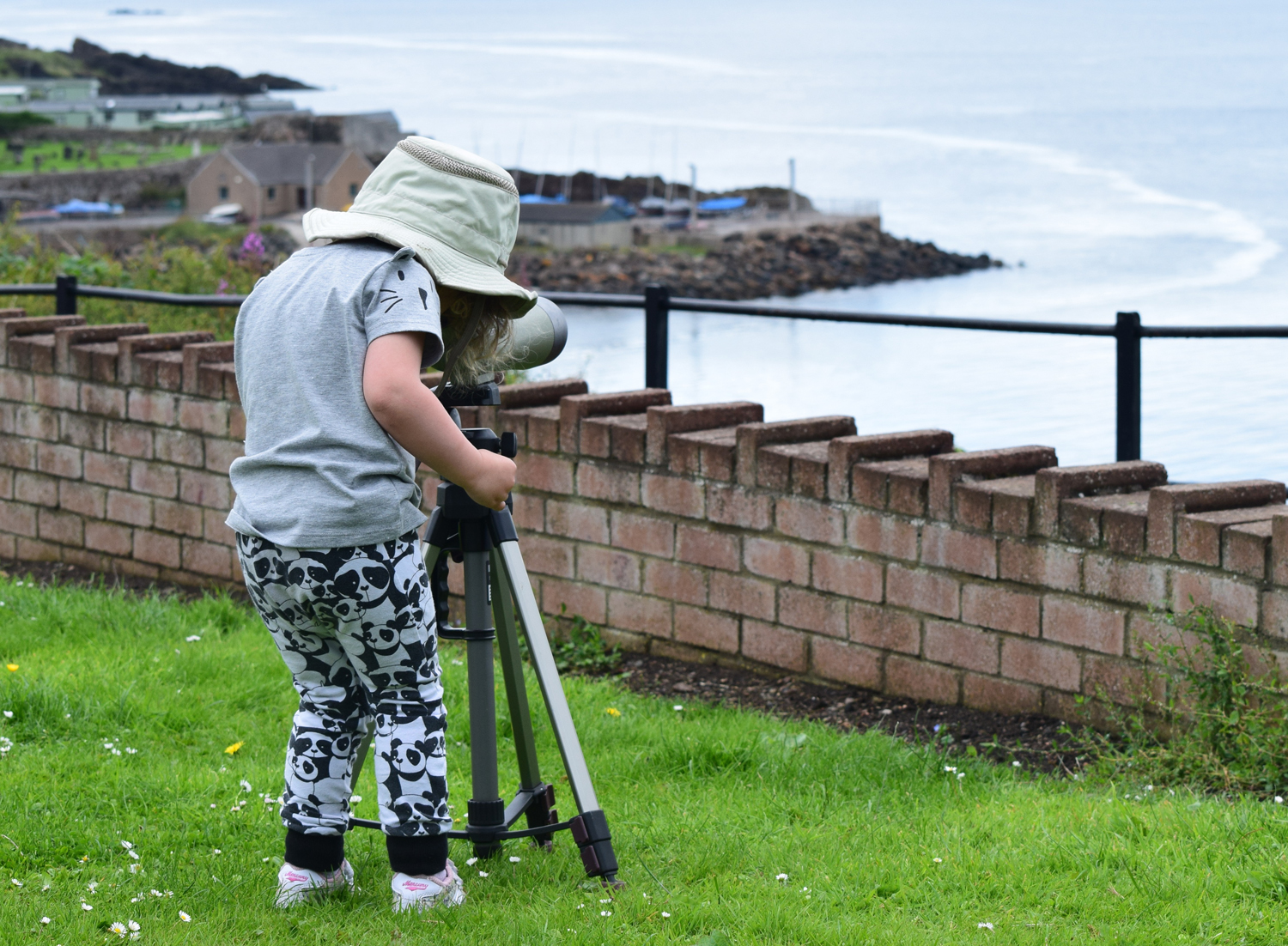 A young whale spotter looking out for whales and dolphins in Kinghorn, Scotland, during NWDW last year. Credit: Ronnie Mackie/Sea Watch Foundation.
