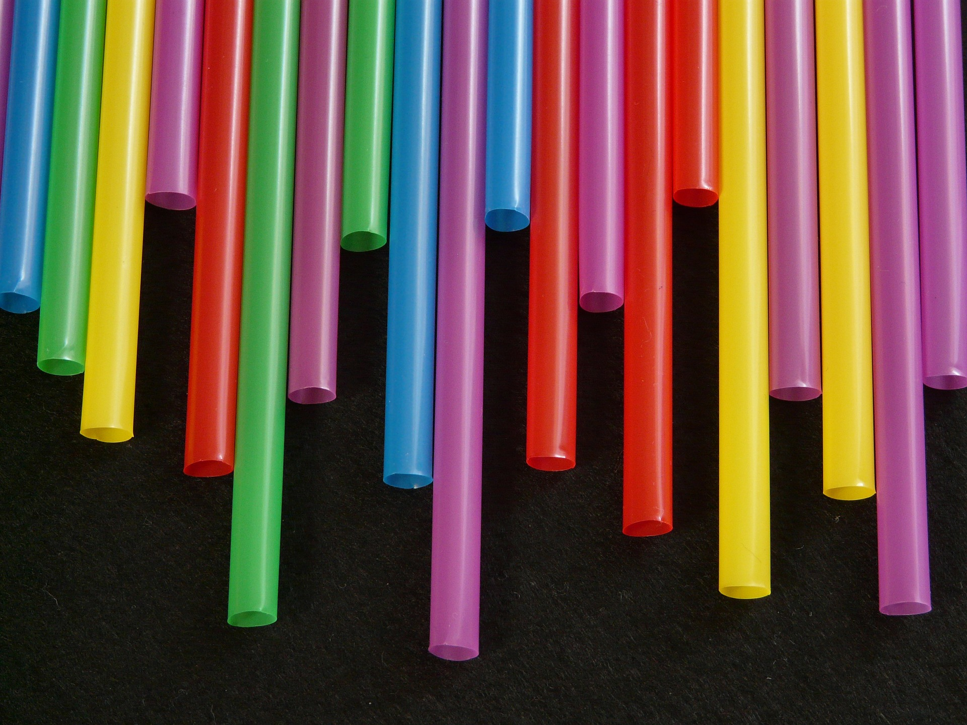 Removing plastic straws was the first of many steps Lauren took to reduce her impact on our planet. Image Credit:  Plastic straws  by  Hans  ( Pixabay Licence ).