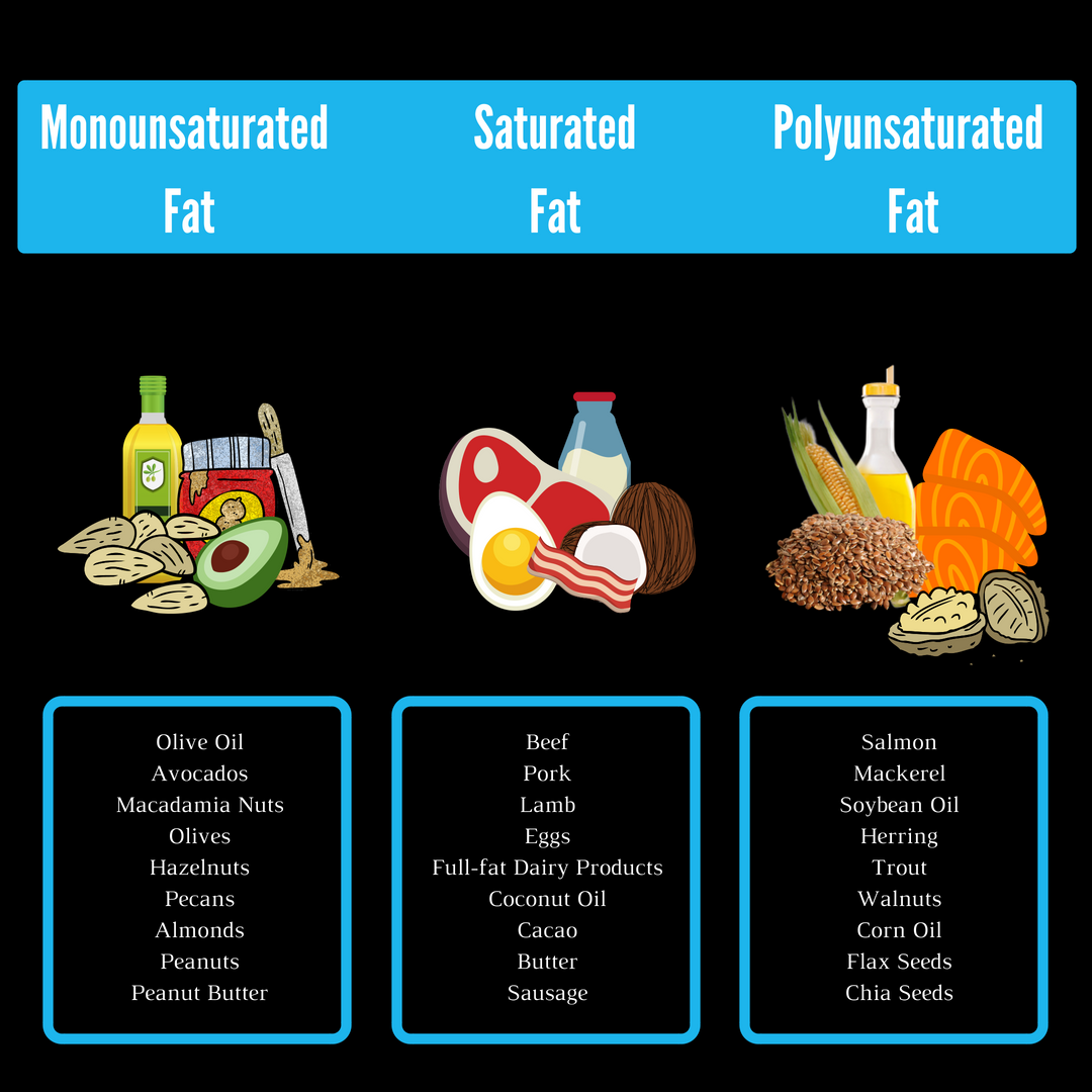 Fats infograph article text.png