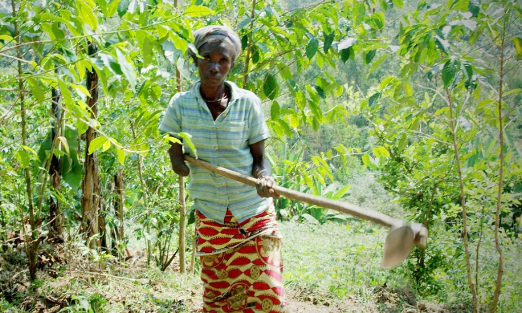 Cifa, a 38-year-old coffee producer and ERW survivor, has a below elbow amputation on her right arm. She is married with three children who all work on the farm because she does not have enough money to pay for their education.