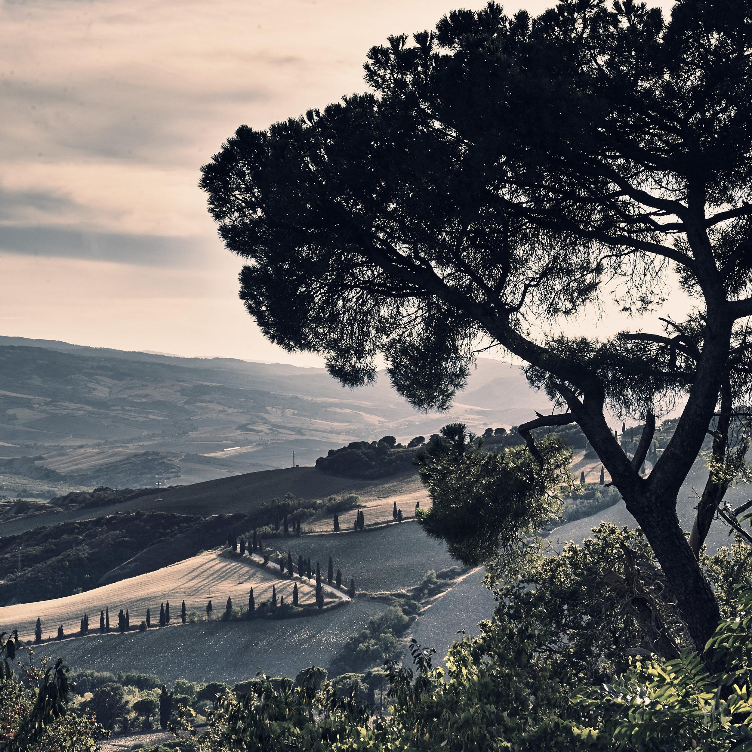 Tuscany_110907_932_midQ_wm 1.jpg