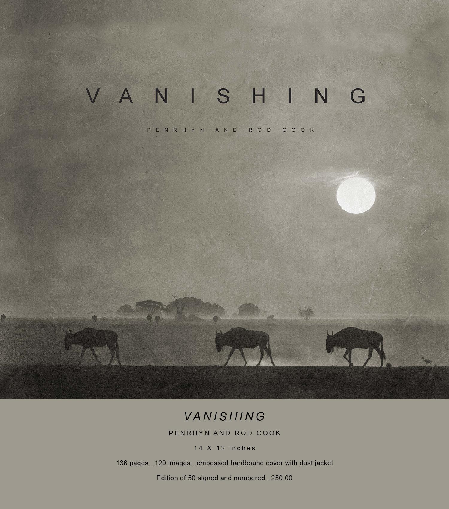 VANISHING WEB.jpg