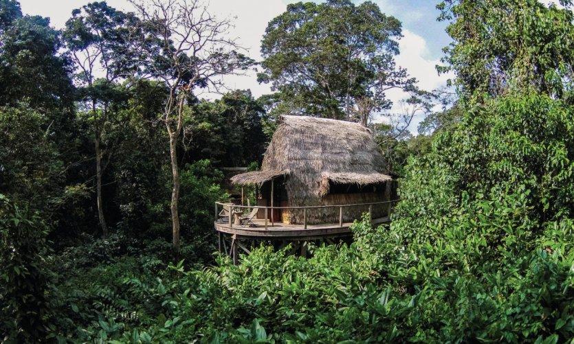 290623-parc-national-d-odzala-kokoua-camp-ngaga-parc-national.jpg