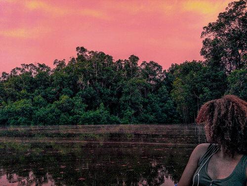 parc des mangroves.jpg