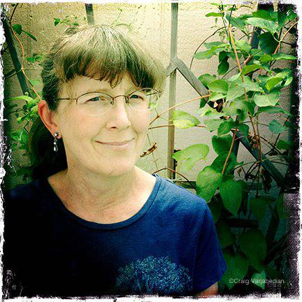 Cindy Lane.jpg