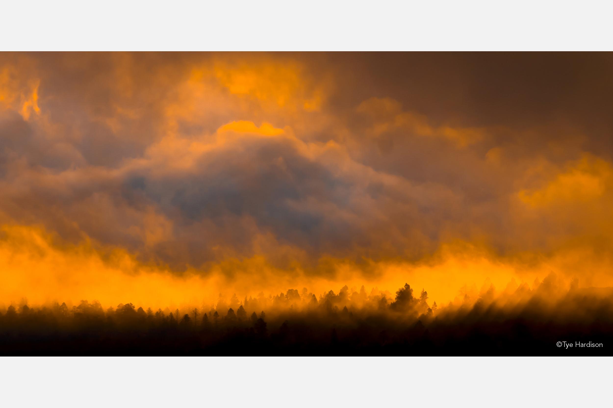 Hardison sunrise.jpg