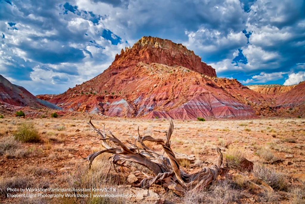 New-Mexico-KerryS.jpg