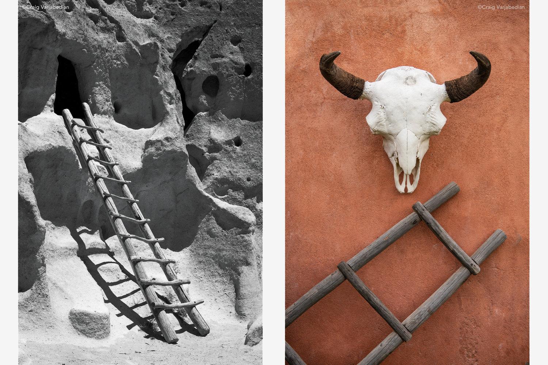 ladder+++skull.jpg