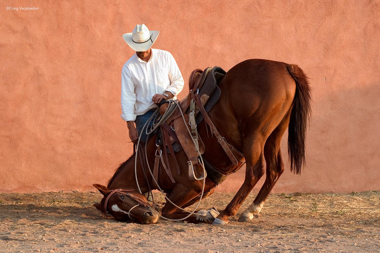 Richard and Sparrow-Santa Fe-NM-©Craig-Varjabedian.jpg