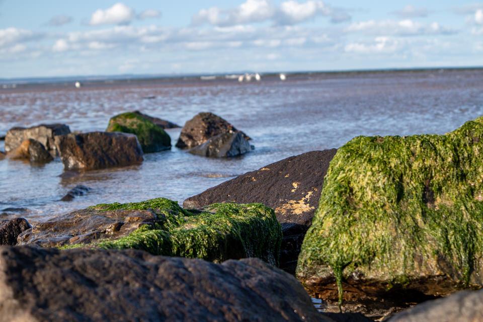 St. Andrews Beach in St. Andrews, Scotland. Best honeymoon spot!| MissFunctional Money