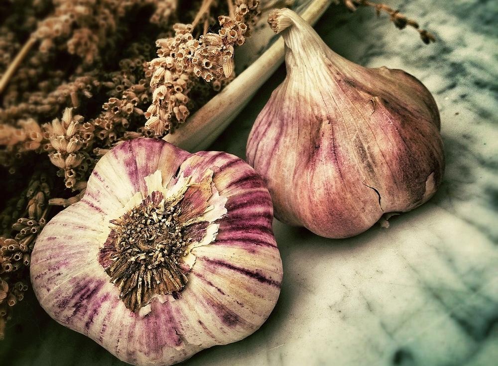 garlic 1000.jpg