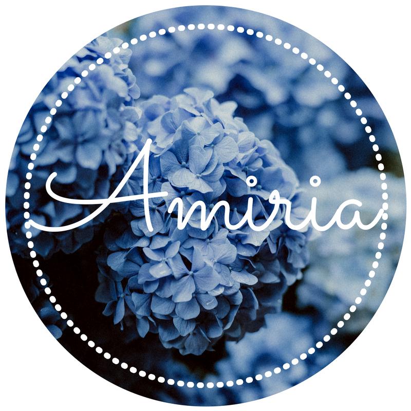 amirias-story.png