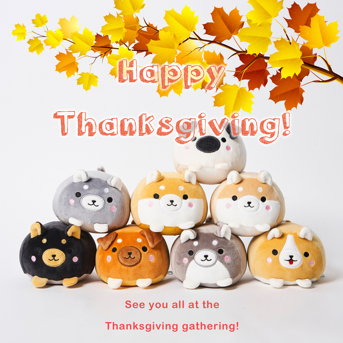 2017 Thanksgiving Greeting - Marshmallow Dogs -  DOWNLOAD