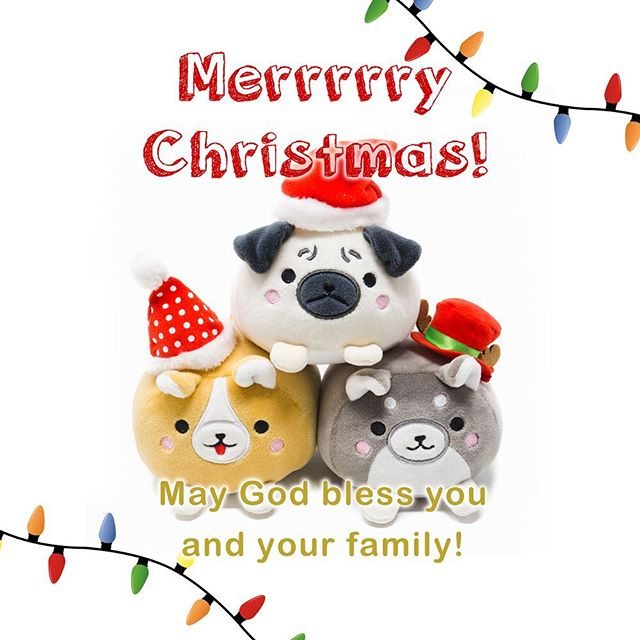 Merry Christmas! 🎁🎄 #dog #toycup #christmas #merrychristmas #corgi #dogs #dogsofinstagram #plush #animal #pug #pugsofinstagram #santa #holiday #party #toy #greetingcards