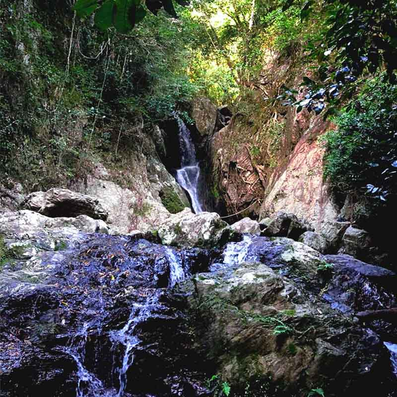 Fairy Falls - A Cairns favourite swimming spot, located nearby to Crystal Cascades swimming hole and walking track.
