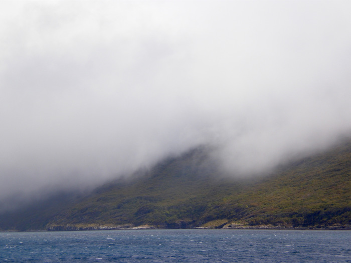 Macquarie Island. Photo © Bonny Cassidy.