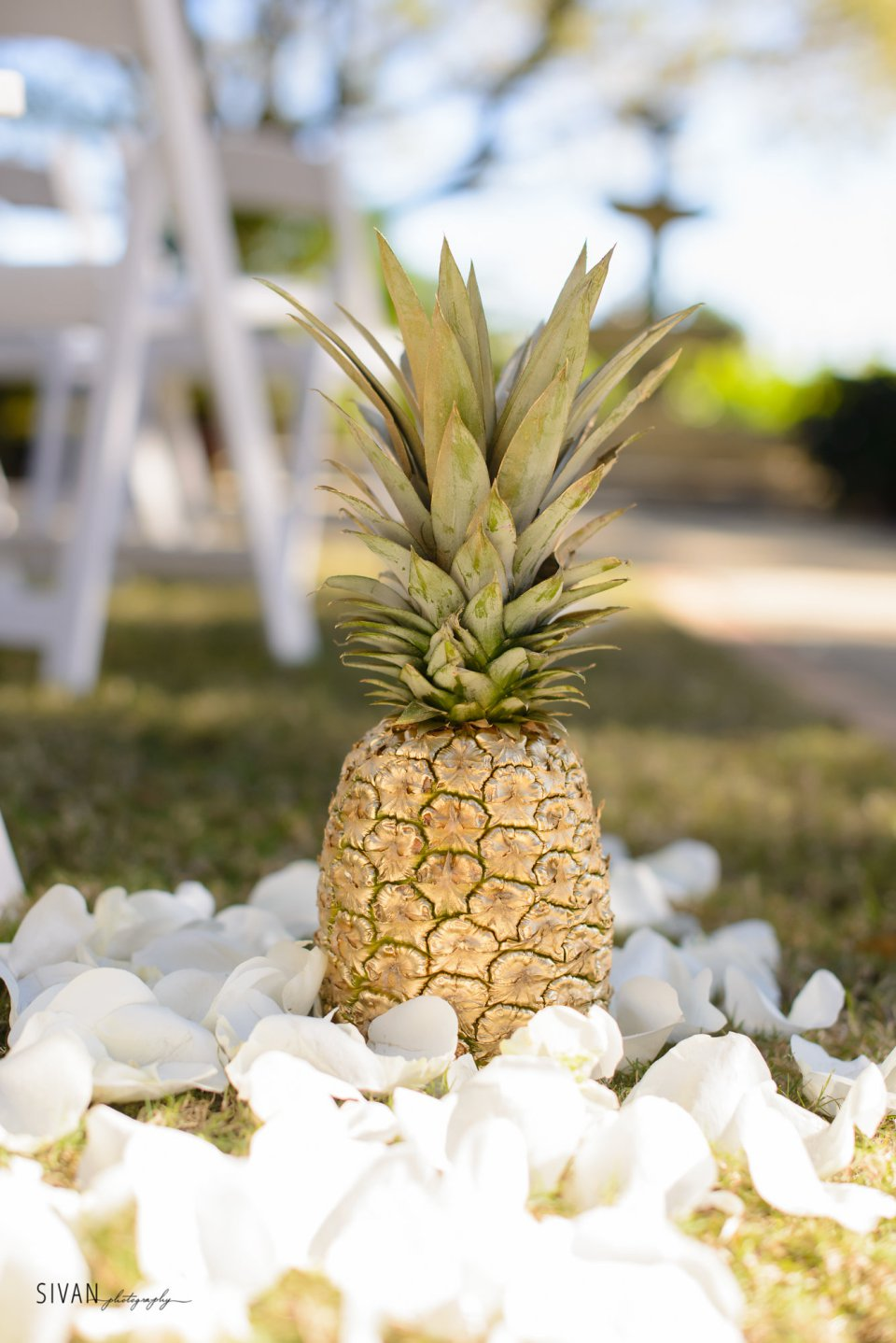 Bluegrass Chic - Gold Pineapple with petal aisle marker