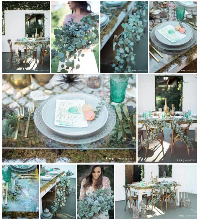 Bluegrass Chic - Succulent table design