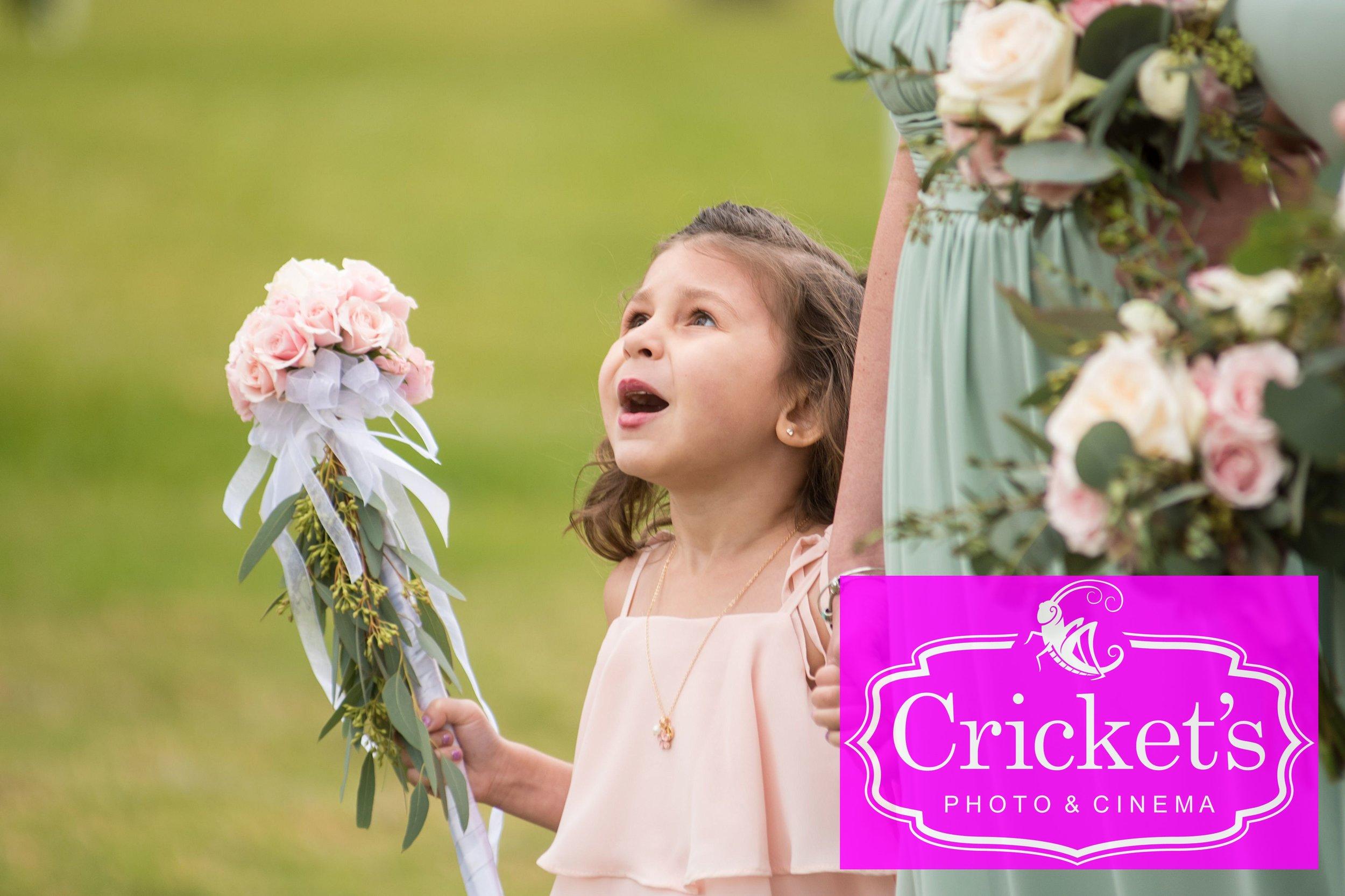 Bluegrass Chic - Cricket's Photo