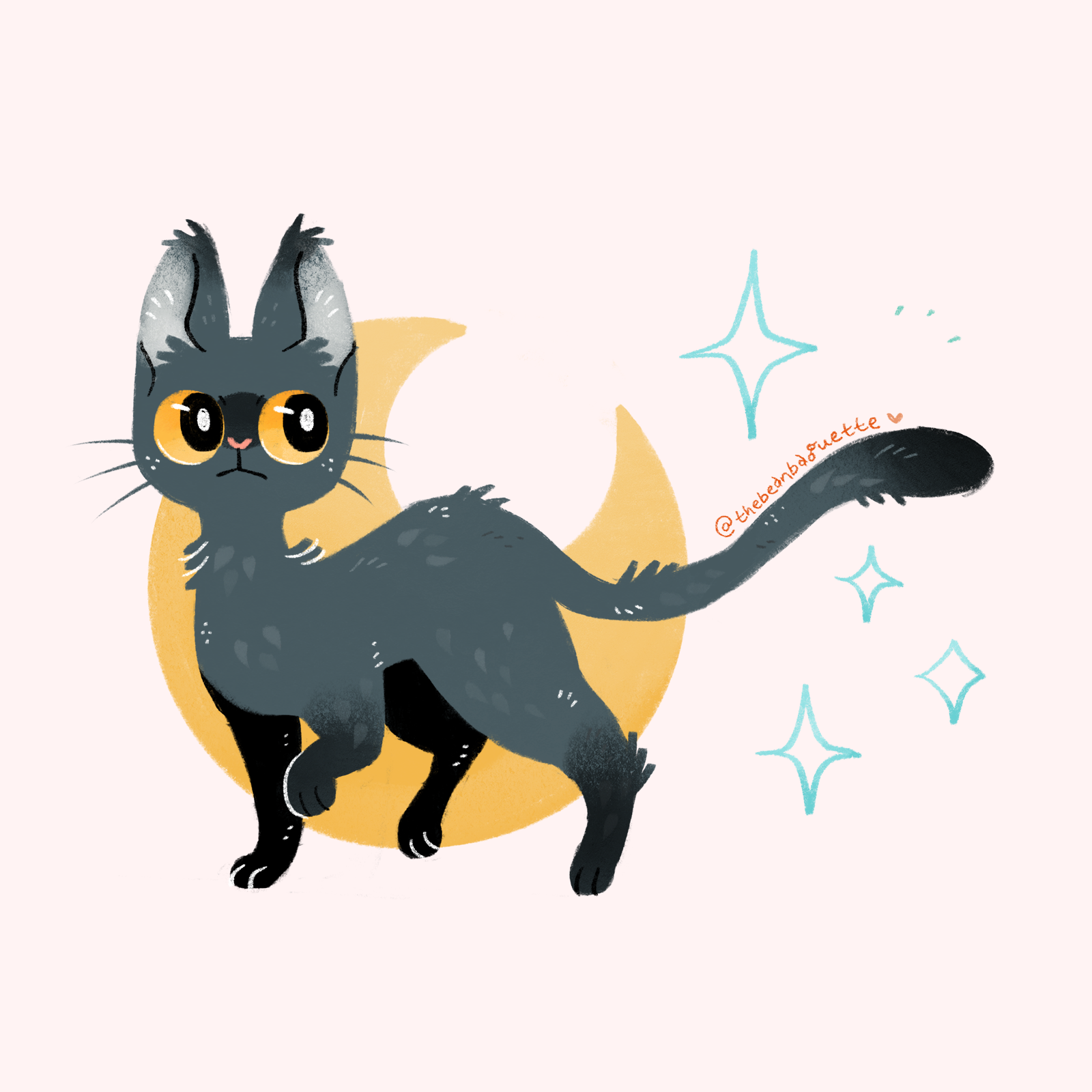 moon kitty.png