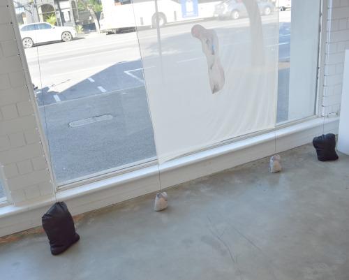 Opaque Divides - Swollen Flat    Installation Shot at Floating Goose Studios, Adelaide