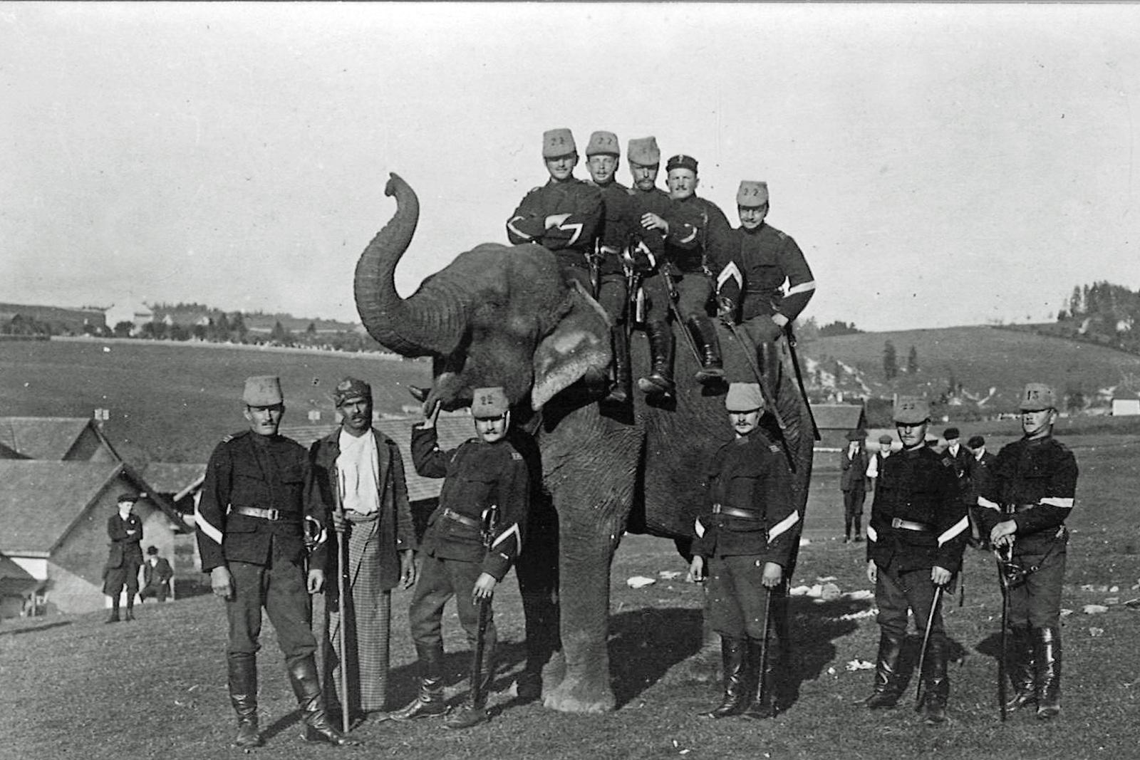 Moment de détente en compagnie d'un éléphant réquisitionné pour des soldats mobilisés à La Chaux-de-Fonds en 1914, l'une des nombreuses photos passionnantes présentées dans l'exposition