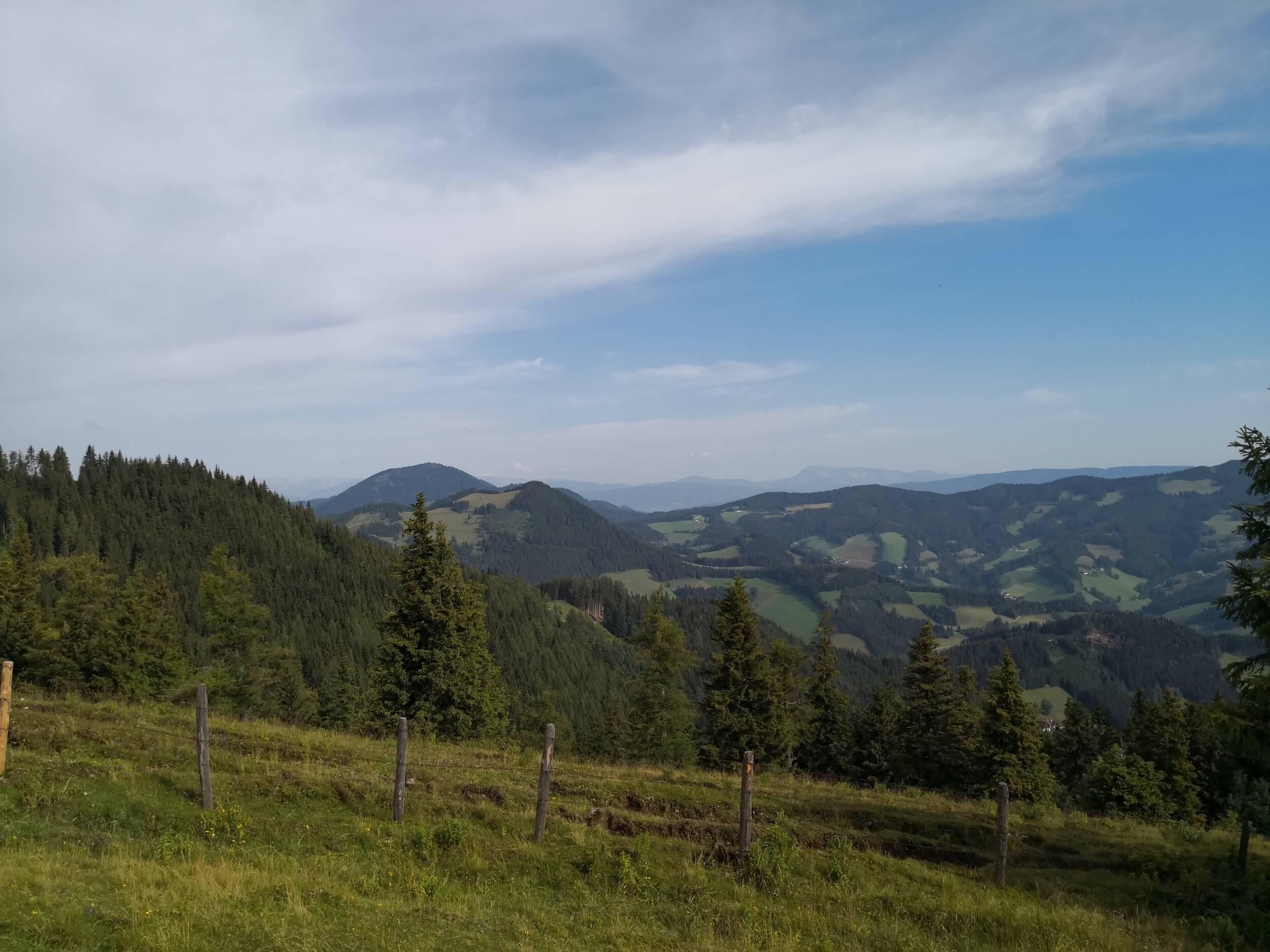 Ewald Koch - Sommeralm 09.jpg