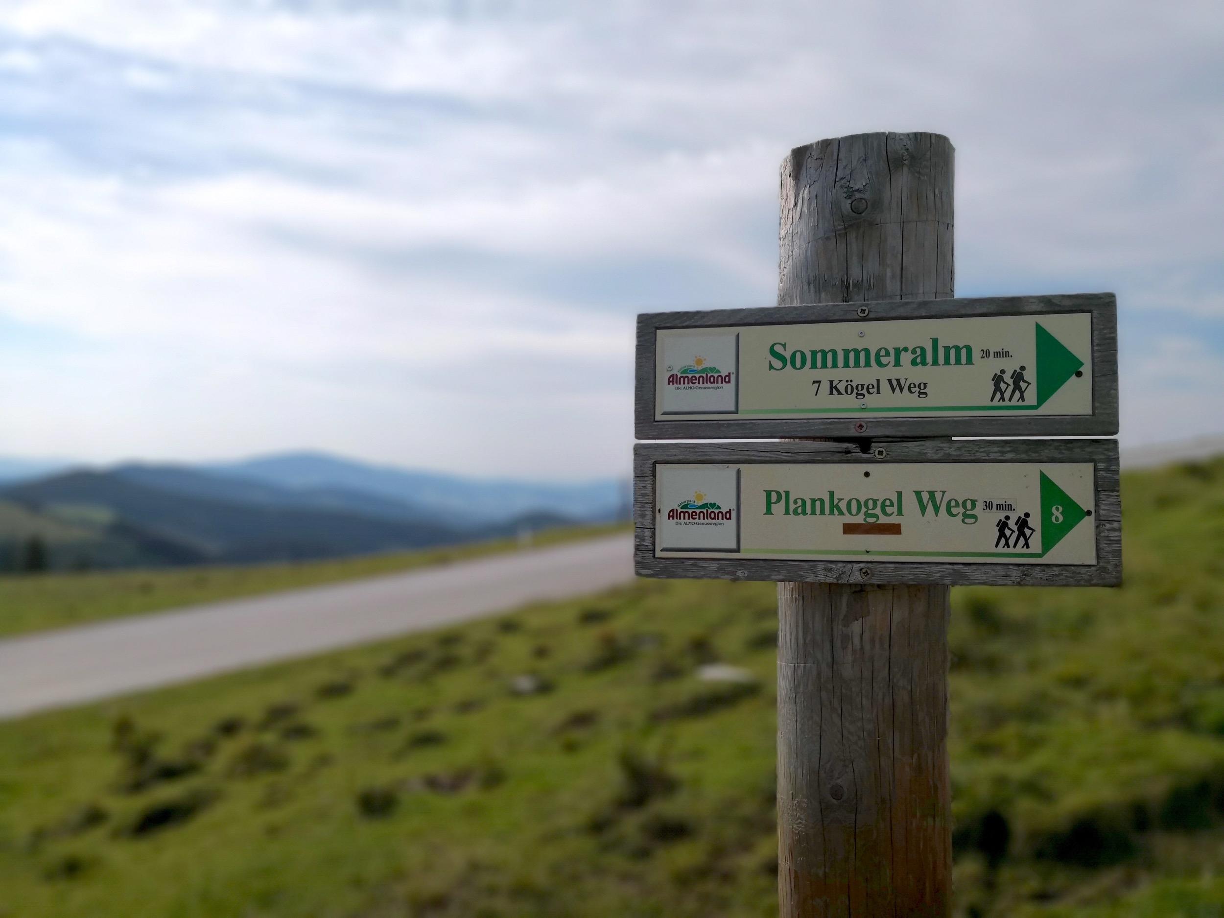 Ewald Koch - Sommeralm 07.jpg