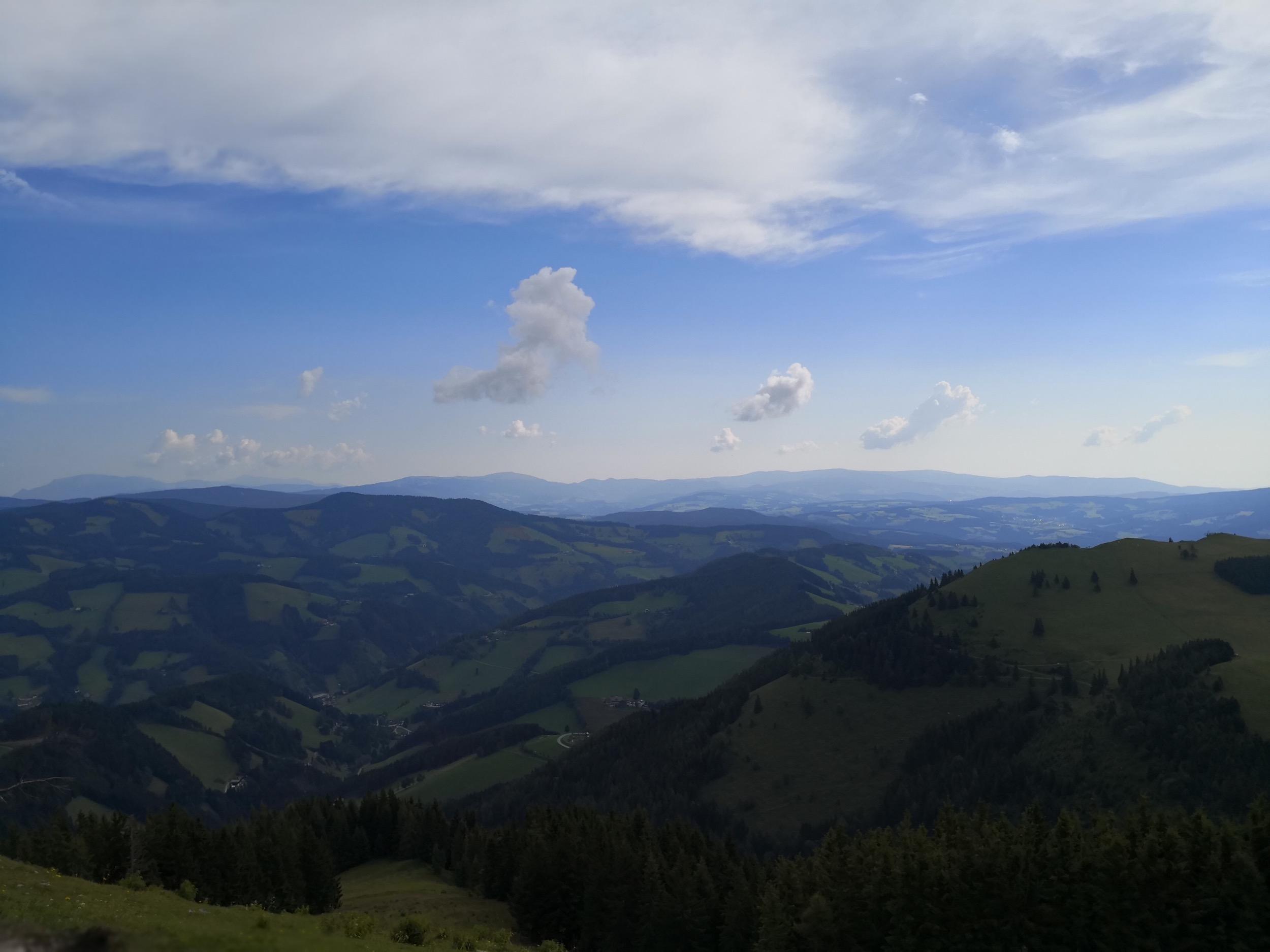 Ewald Koch - Sommeralm 13.jpg
