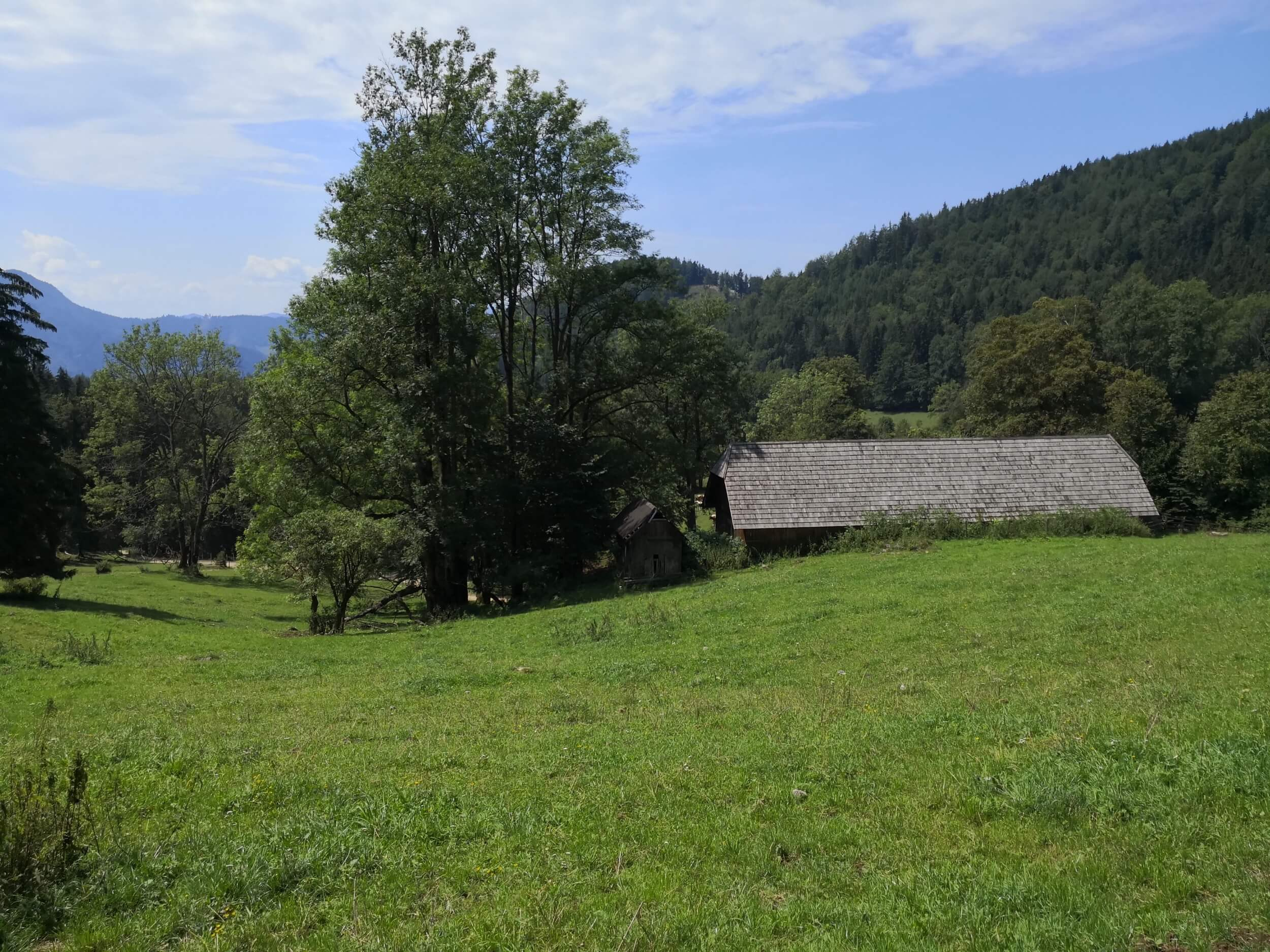 Ewald Koch - Baerenschuetzklamm 46.jpg