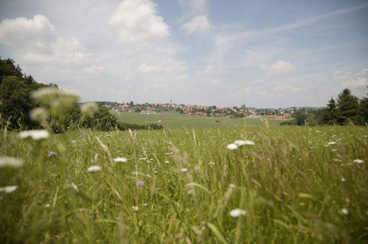 """Foto:  """"Grüne Wiese mit Blick auf Kirchberg""""  by  Edi Schwarzl  used & licensed under  CC BY-NC 2.0"""