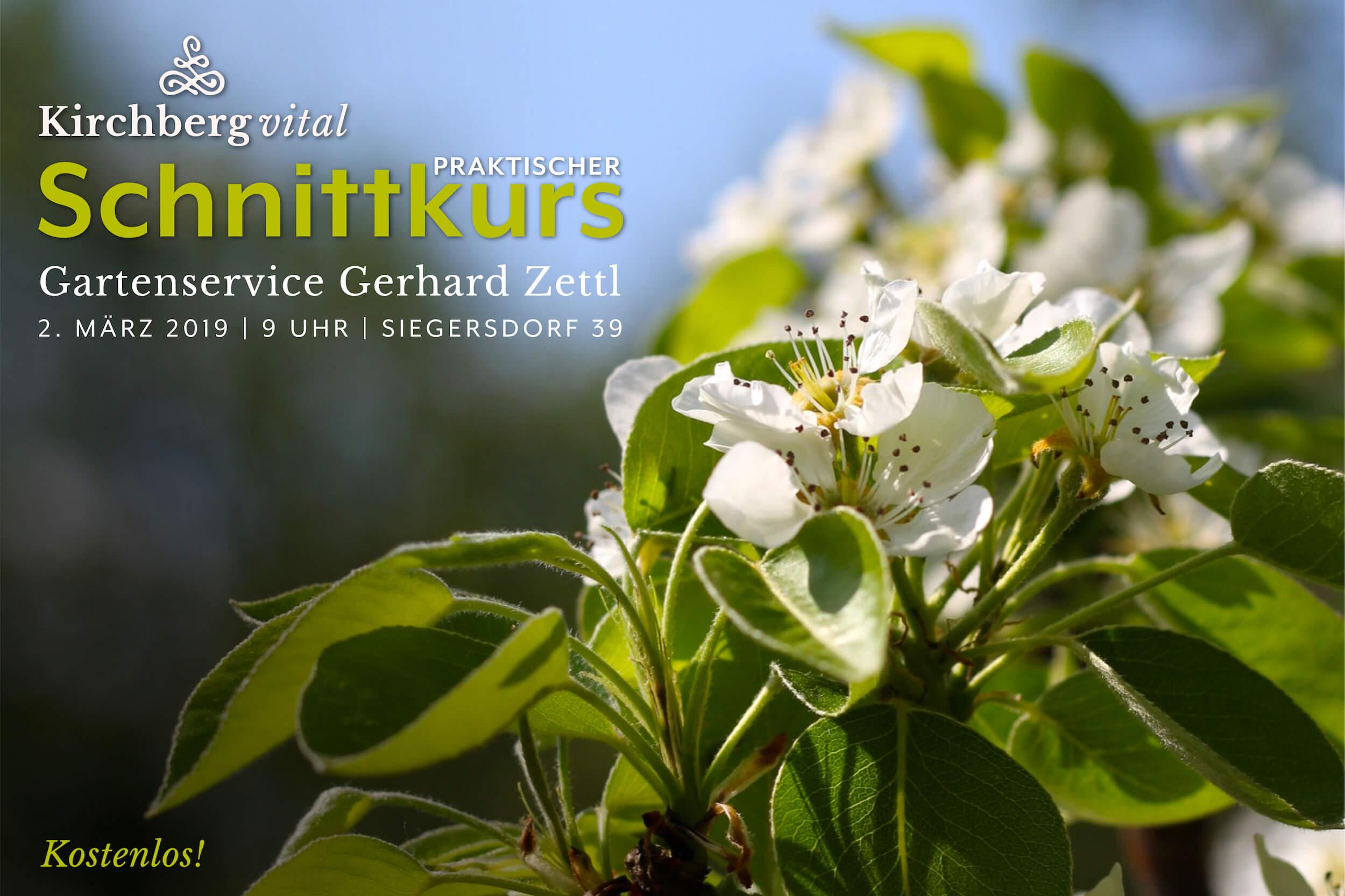 Schnittkurs-Zettl_BANNER.jpg
