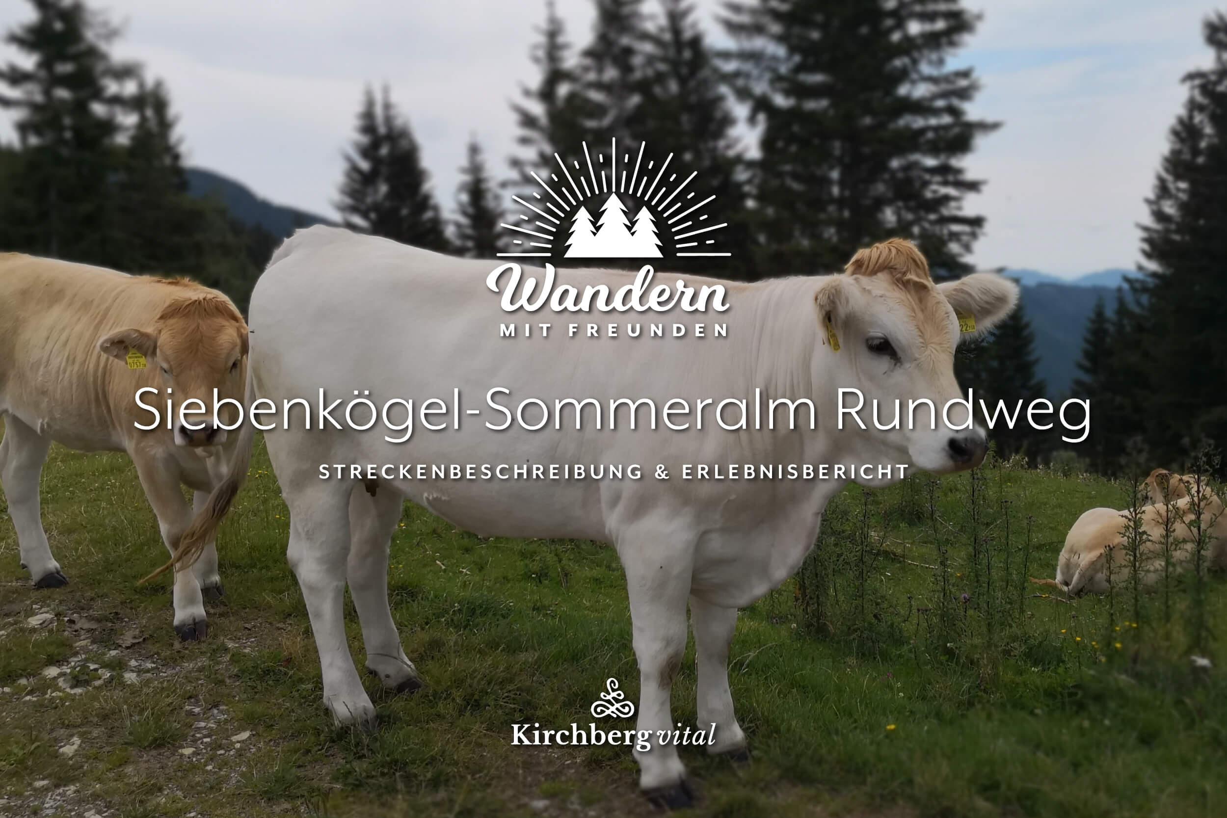 Sommeralm-L_BANNER.jpg