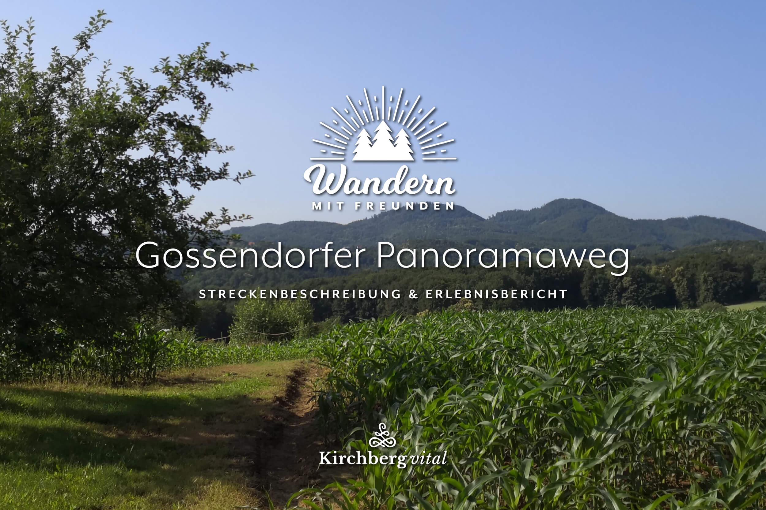Gossendorf-L_BANNER.jpg