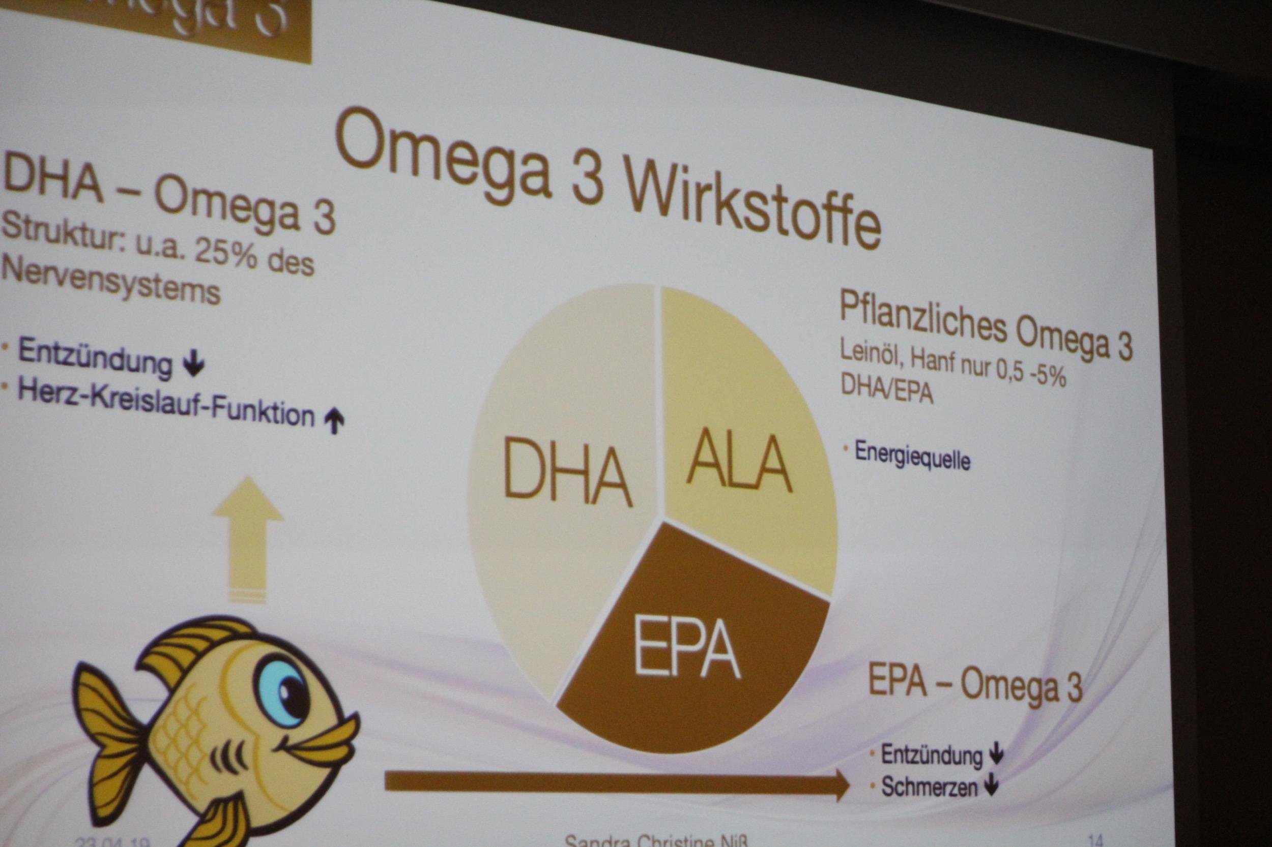 Omega-3 Wirkstoffe | EPA, DHA und ALA