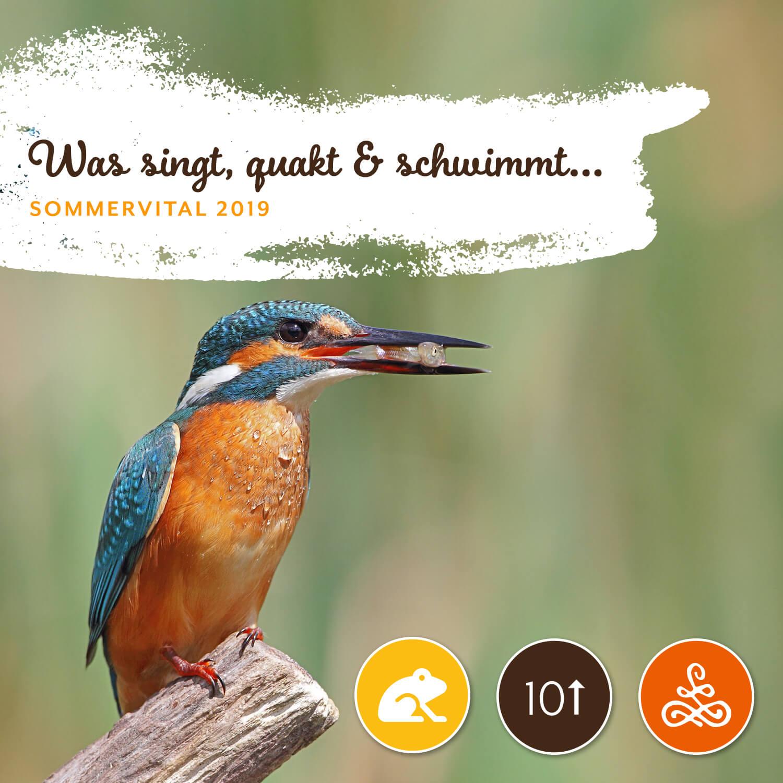 Was singt, quakt und schwimmt denn da? - Mit Andreas Tiefenbach11. Juli, 08:00 – 11:00 Uhr