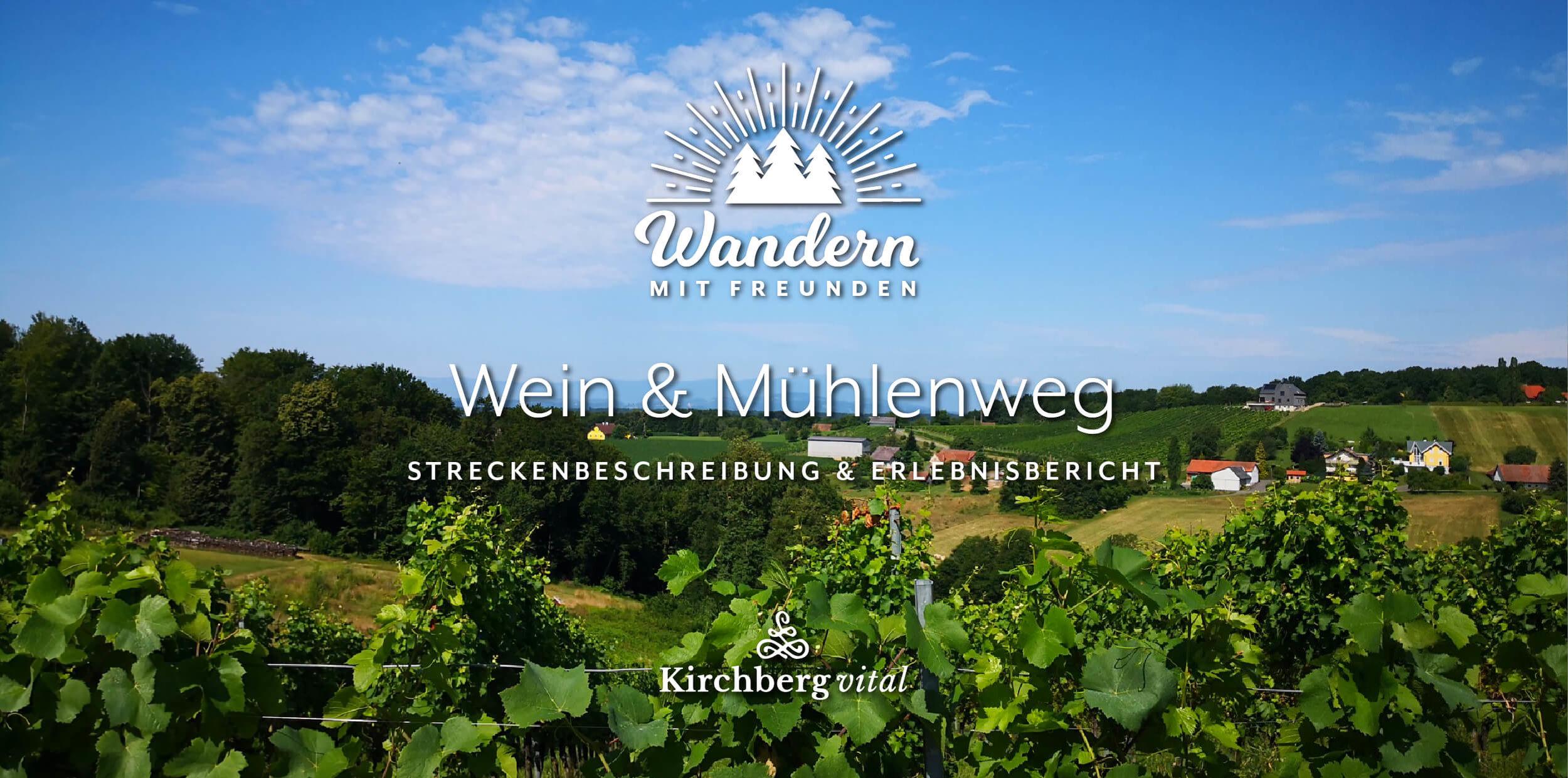 Wein-Muehlen-M2_BLOG-BANNER.jpg