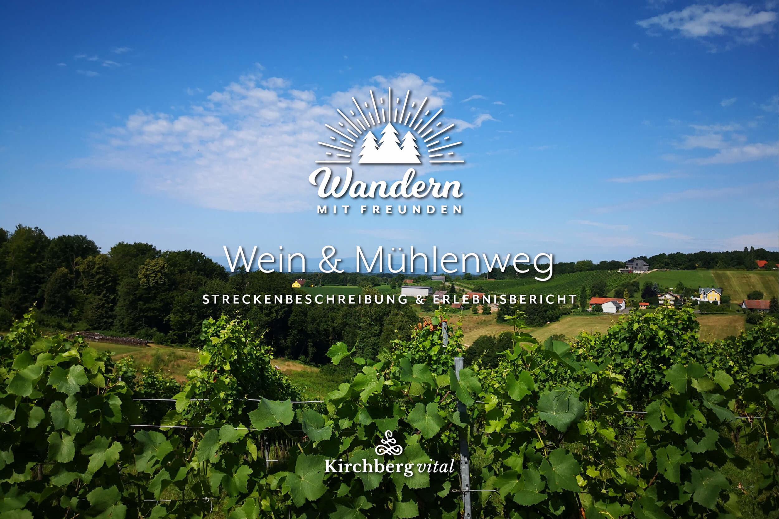 Wein-Muehlen-L2_BLOG-BANNER.jpg