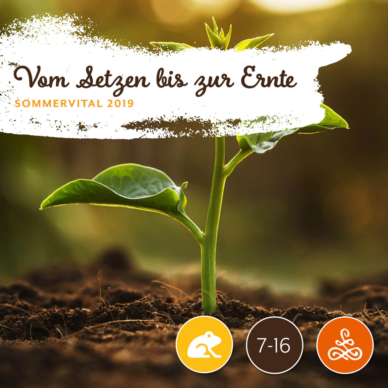 Vom Setzen bis zur Ernte - Andrea Zettl | Gartenservice ZettlAm Freitag von 15:00 – 17:00 Uhr