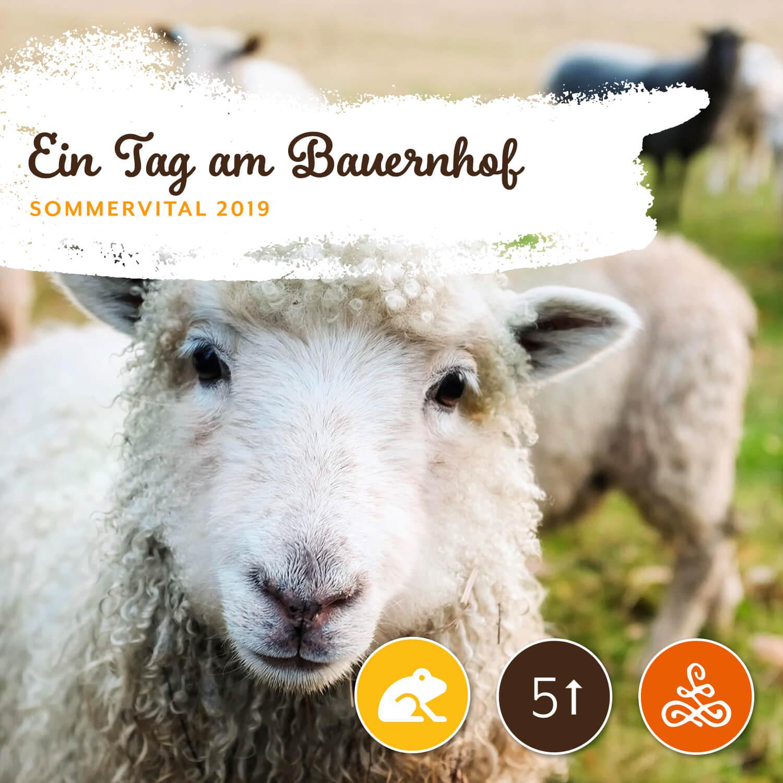 Ein Tag am Bauernhof - Mit Helmut TeschlAm Dienstag von 14:00 – 18:00 Uhr