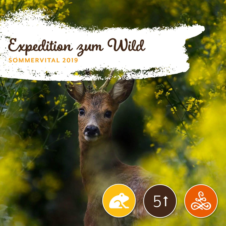 Expedition zum Wild - Jägerschaft Studenzen9. August 2019, von 16:00 – 19:00 Uhr