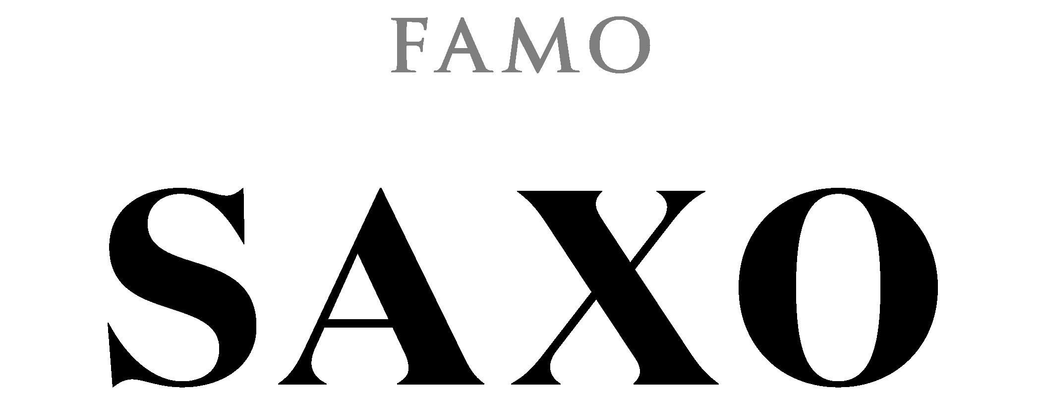Saxo_Logo_Black@3x.png