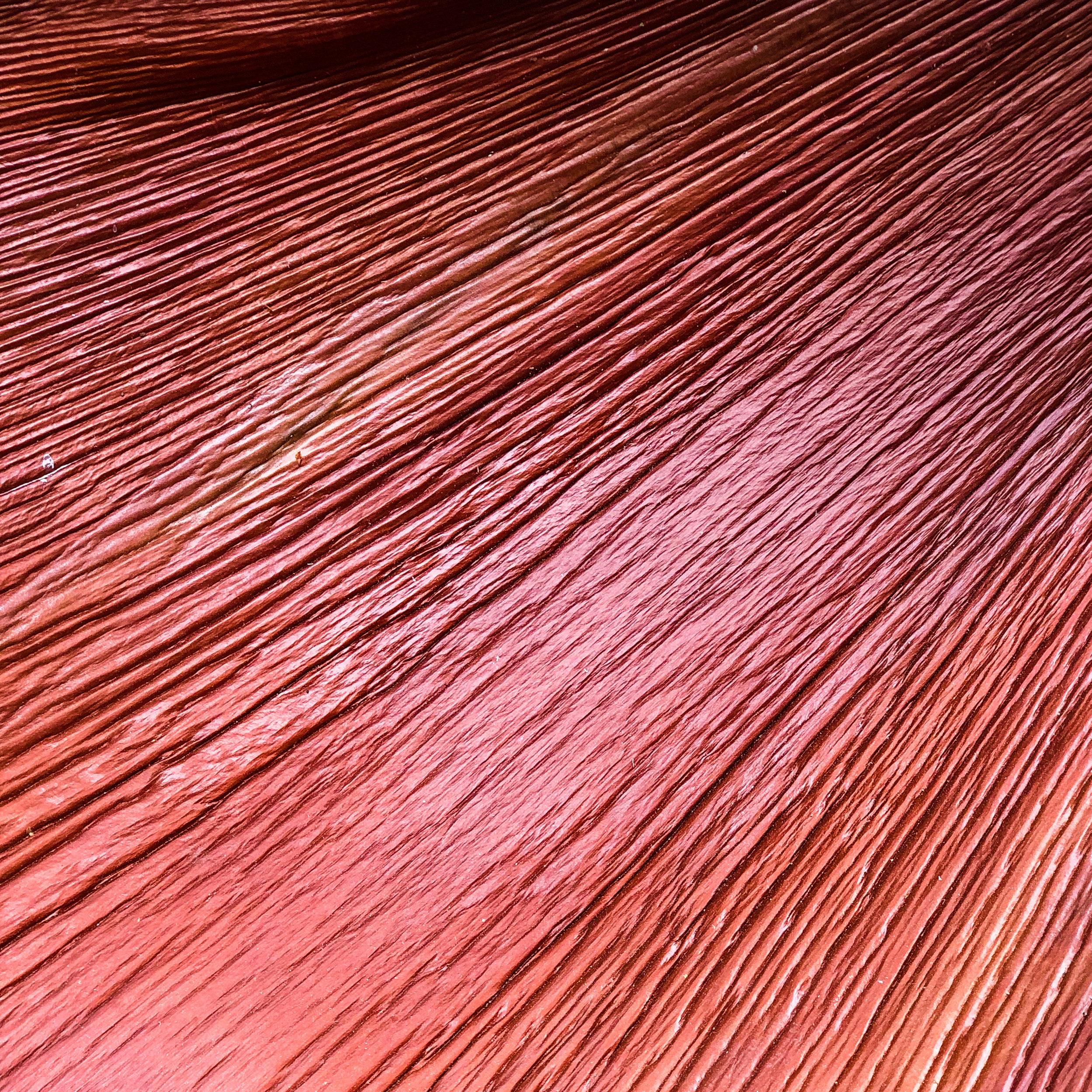 purple-heart-wood.jpg