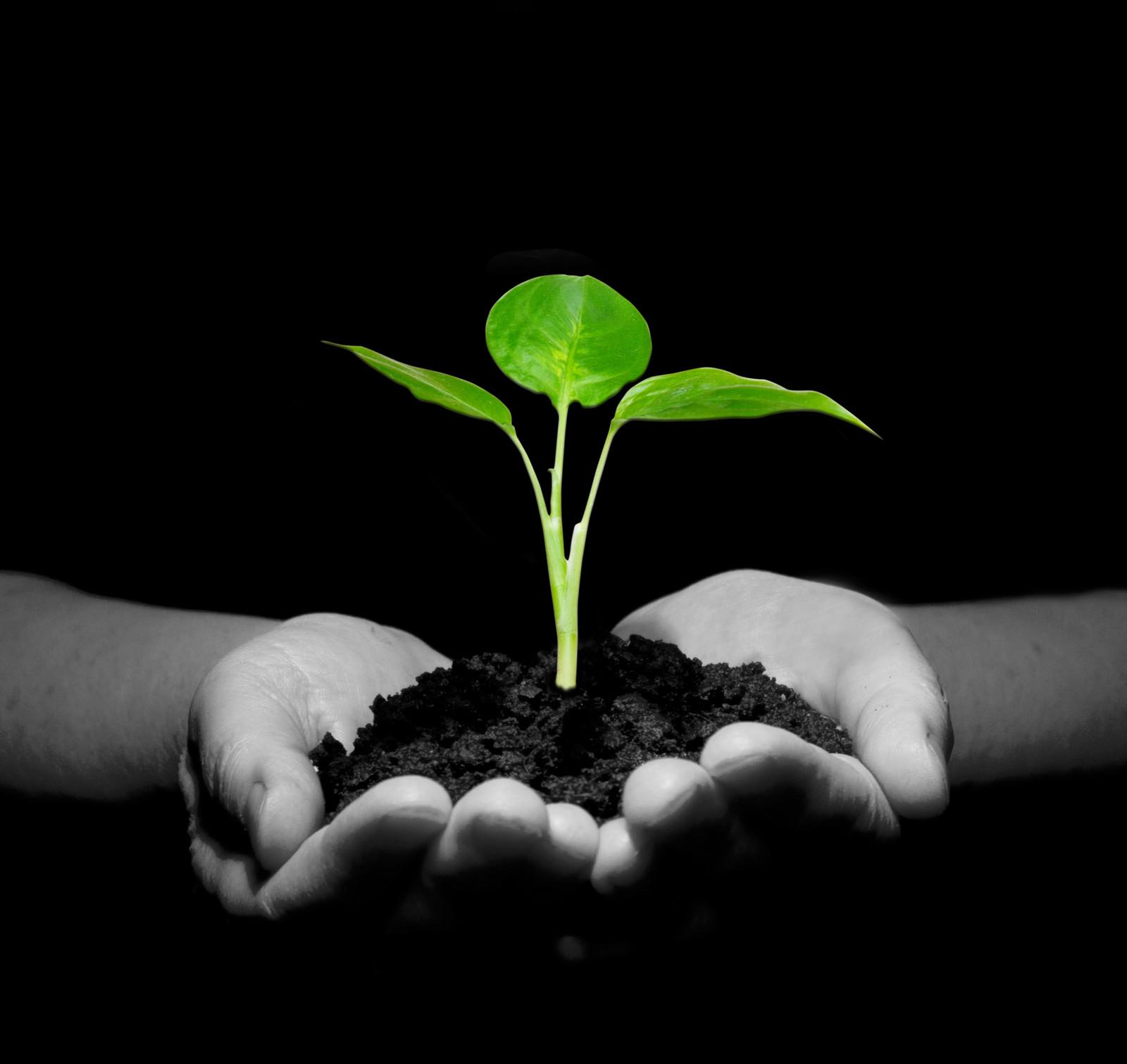 CIPP Is an environmentally friendly technology.