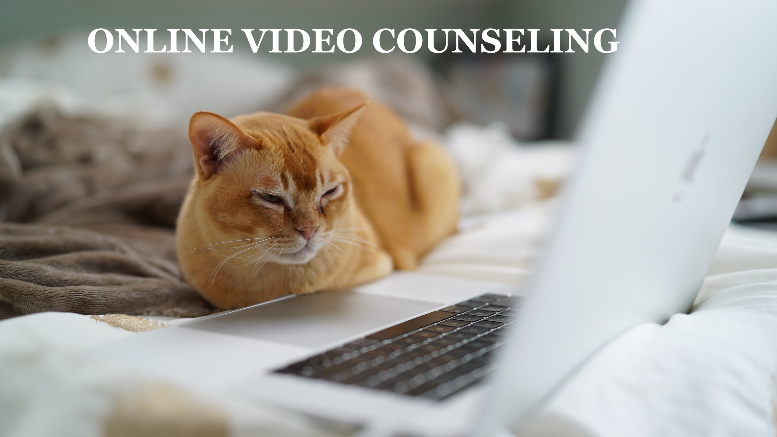 VIDEO THERAPY  Online counseling is now exclusively offered for individual therapy! Video are not only an added convenience through inclement weather, travel, but can be just as effective as traditional in-person therapy. Maybe you work or live too far from my office? No longer does location have to get in the way of choosing the therapist who is right for you!    Still not sure? Try out a  Free 15 minute Video Consultation  to get a sneak-peak of what it's like!