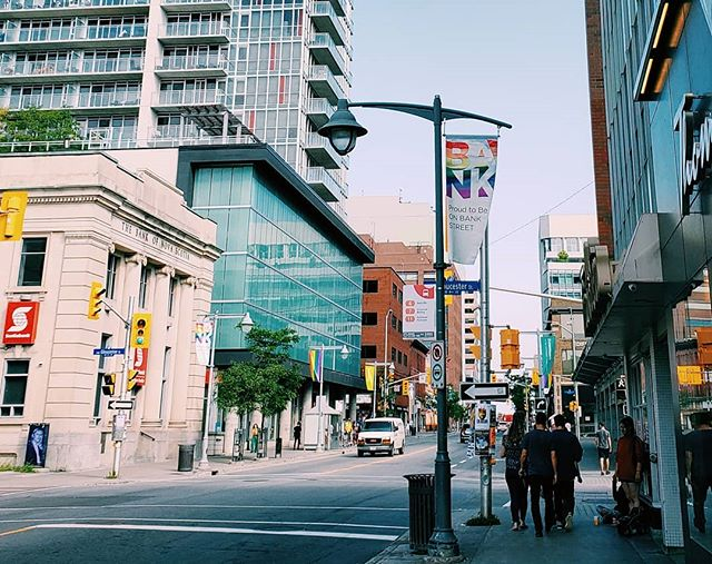 Check it out 👀 The #pride street banners are up on Downtown Bank! 🏳️‍🌈 We are counting down the days until @fiertecappride takes over Ottawa in August! 😁 . . . . . #ottawa #myottawa #ott #yow #love #mainstreet #downtown #Centretown #community #new #likeforlike #ontario #Canada